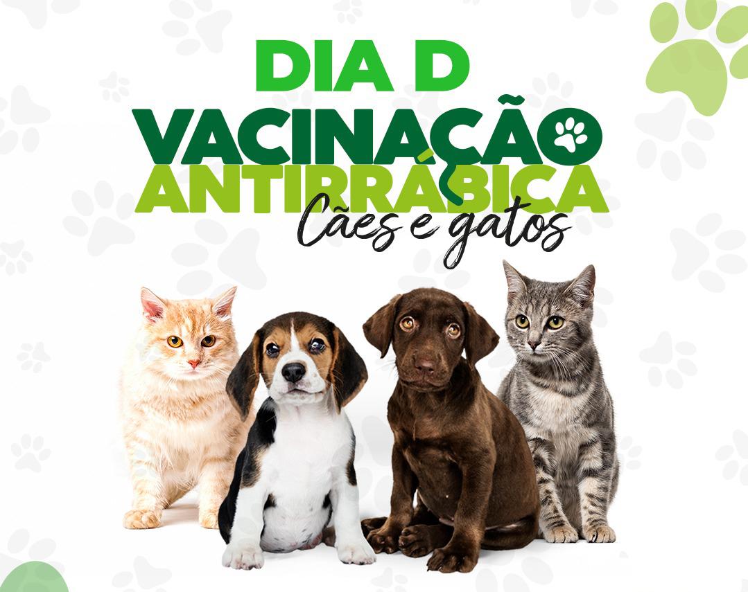 Campanha de vacinação antirrábica terá Dia D neste sábado (09), em Santa Rita